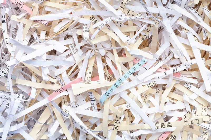 The Cycle of Life: Paper Recycling | In Confidence